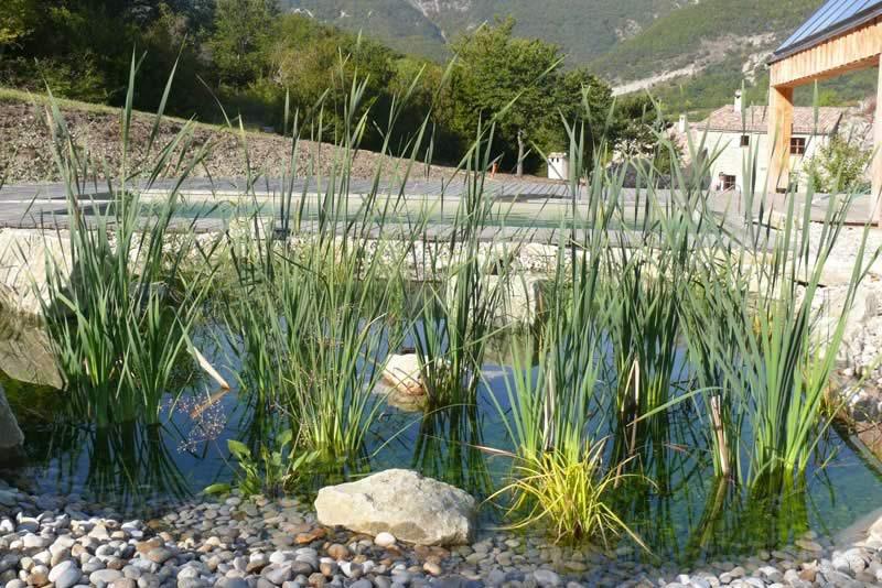 Page-activite-Jardins-Realisation-9-Les-Jardins-en-Cascades-Paysagiste-livron-roseaux